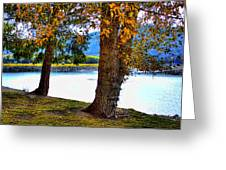 Alder Lake In The Fall Greeting Card