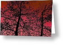 Alder Trees Against The Winter Sunrise Greeting Card