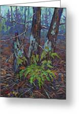 Alders With Ferns Greeting Card