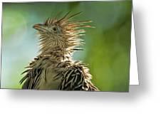 Alert Bird Greeting Card