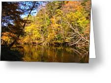 Alexandria Creek In The Fall Greeting Card