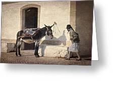 Algarve Donkey Greeting Card