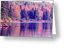Algonquin Autumn Greeting Card