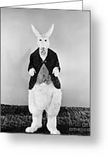 Alice In Wonderland, 1933 Greeting Card