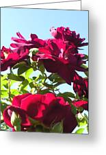 All About Roses And Blue Skies IIi Greeting Card