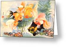 All Are Curious Greeting Card