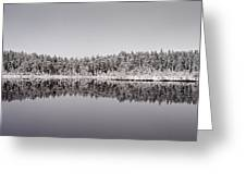 All Colors Of Gray. Panorama Greeting Card