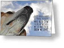 All Dogs Go To Heaven Quote Greeting Card