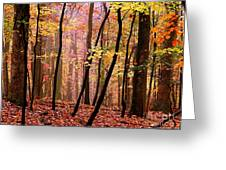 All Fall Greeting Card