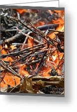 All Fired Up Greeting Card