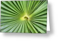 All Green Greeting Card