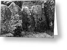 All In A Row At Fuerty Cemetery Roscommon Ireland Greeting Card