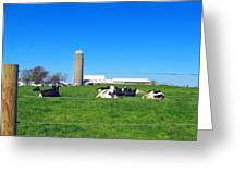All Is Well In The Farmland Greeting Card