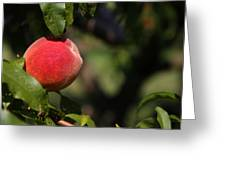 All Natural Peach Greeting Card