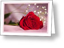 All Occasion Rose Greeting Card