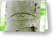 All-seeing Eye Of God On A Tree Bark Greeting Card