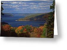 Allegheny National Forest Lake  Greeting Card