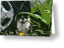 Alley Cat Greeting Card