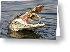 Alligator Catching And Cracking A Blue Crab Greeting Card