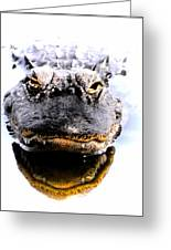 Alligator Fangs 2 Greeting Card