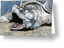 Alligator Snapping Turtle Greeting Card