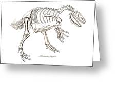 Allosaurus Skeleton Greeting Card