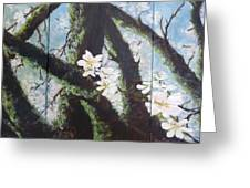 Almond Blossom Triptych Greeting Card