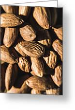 Almond Nuts Greeting Card