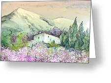 Almond Trees In Altea La Vieja Greeting Card