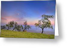 Almonds And Moon Greeting Card