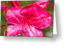 Almost April Showers Azalea Greeting Card