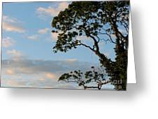 Almost Evening Greeting Card