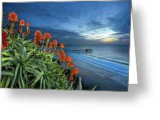 Aloe Vera Bloom Greeting Card
