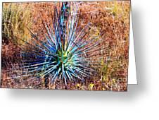 Aloe Vera In Meadow Greeting Card