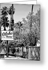 Aloha Hotel Bw Palm Springs Greeting Card