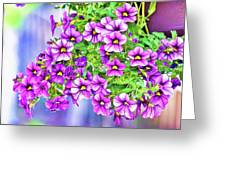 Aloha Purple Sky Calibrachoa Abstract II Greeting Card