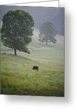 Alone In The Meadow Greeting Card