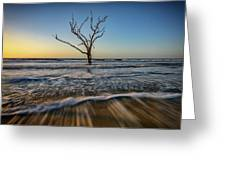 Alone In The Water Greeting Card