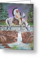 Alone With The Great Spirit Greeting Card by Janna Columbus