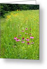 Along A Prairie Path Greeting Card