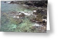 Along Coki Beach Greeting Card