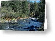 Along Deer Creek Greeting Card