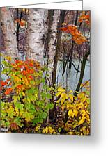 Along The Breezeway In Autumn 2014 Greeting Card