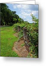 Along The Curved Wall Greeting Card