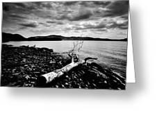 Along The Riverbank Of Beacon Greeting Card