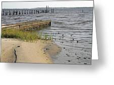 Along The Shore Of Biloxi Bay Greeting Card