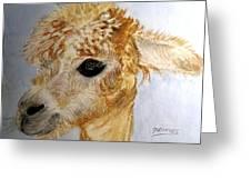 Alpaca Cutie Greeting Card