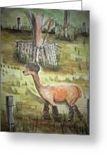 Alpaca Glory Greeting Card