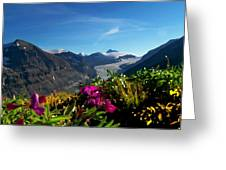 Alpine Meadow Flowers Overlooking Glacier Greeting Card