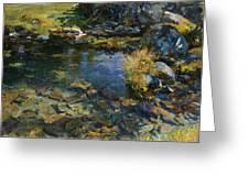 Alpine Pool Greeting Card